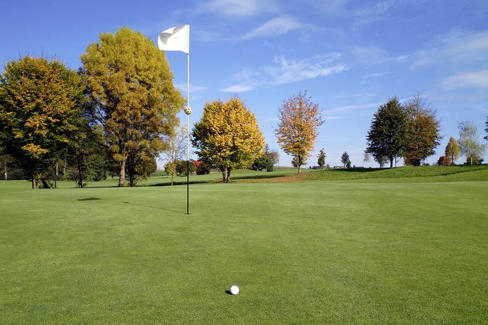 Golfen in der Umgebung